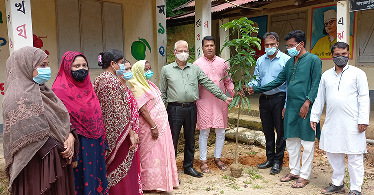 গোলাপগঞ্জ রায়গড় স. প্রা. বিদ্যালয়ে বৃক্ষরোপণ